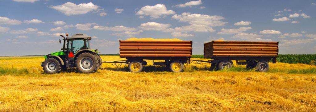 Das Agrarrecht ist eine Querschnittsdisziplin und beinhaltet Regelungen der Forstwirtschaft, Binnenfischerei und Jagd