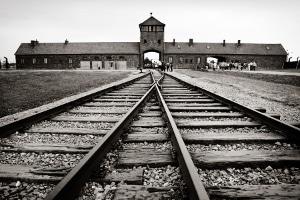 Auch das Leugnen des Holocaust und die Auschwitzlüge gelten als Volksverhetzung.