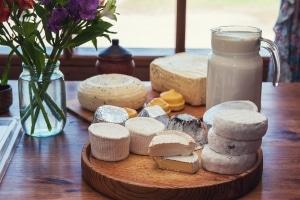 Deutsches Markenrecht: Bei Käse können bestimmte Herkunftsangaben geschützt sein.
