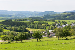 Bisher gibt es in Deutschland nur 130 Fachanwälte für Agrarrecht