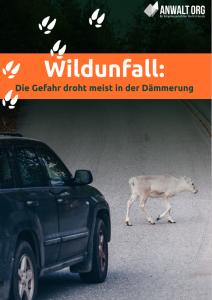 eBook Wildunfall