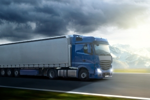 Die Europäische Freihandelszone umfasst unter anderem freien Warenverkehr.