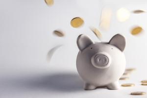 Zu den Pflichten, die der Betreuer durch das BGB erhält, kann unter anderem die Vermögensverwaltung zählen.
