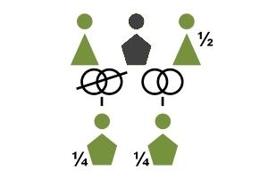 gesetzliche-erbfolge-beispiel3
