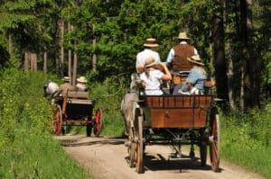 Das Grundstücksverkehrsgesetz soll helfen, die Agrarstruktur zu verbessern