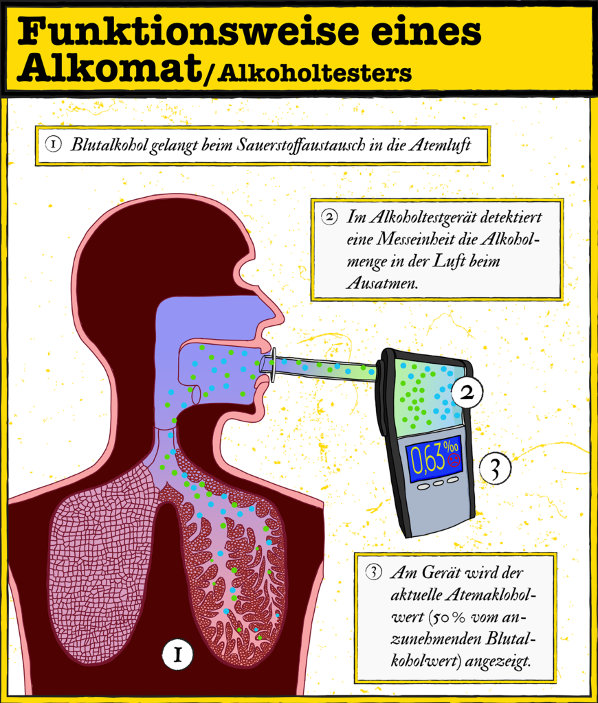 Infografik: Wie ein Alkomat funktioniert