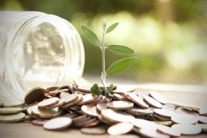 Das Insolvenzverfahren ermöglicht den Neuanfang trotz Schulden.