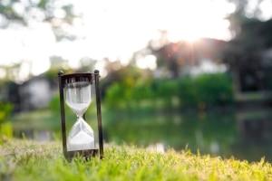 Laubsauger und Laubbläser: Zu welcher Uhrzeit ist der Einsatz erlaubt?