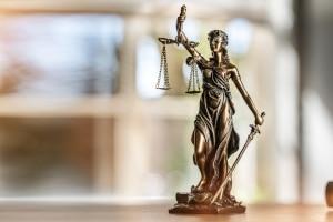Rechtsgebiete in der Übersicht