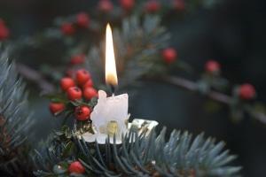 Fängt der Weihnachtsbaum Feuer, kann es Probleme mit der Versicherung geben.